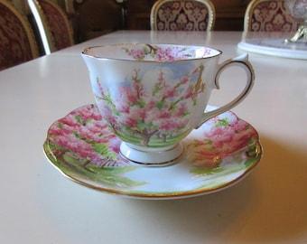ENGLAND ROYAL ALBERT Teacup and Saucer Set