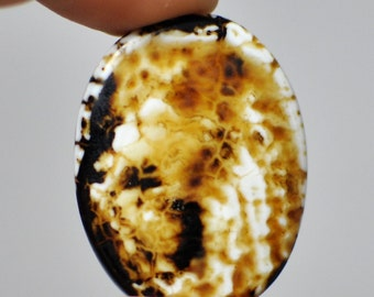 Natural Striped Brown Fire Agate  Oval Bead. 38x30x6 mm.