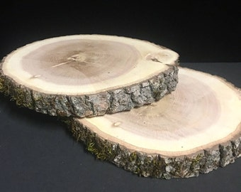 "Large Rustic Wood Slices 8-11"" diameter, Wedding Centerpiece, Cake Stand, Wood Rounds, Tree Slice, Kiln Dried Wood Slices, Rustic Wood"