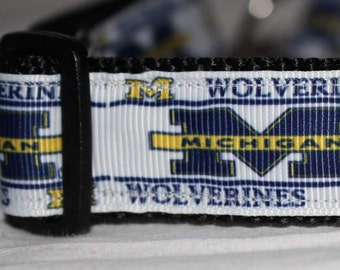 "Michigan Dog Collar - Side Release Buckle (1"" Width) - Martingale Option Available"