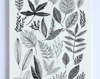 Hand Pulled Black Botanical Study Screen Print