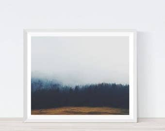 Nature Photography, Forest Print, Tree Print, Forest Poster, Woodland photo, Digital Photography, Foggy Forest,Printable Artwork, Wall art