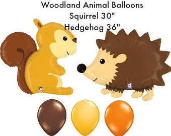 woodland hedgehog first birthday balloon set bithday