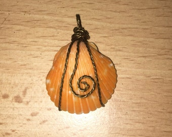 Seashell Wire Wrapped Necklace
