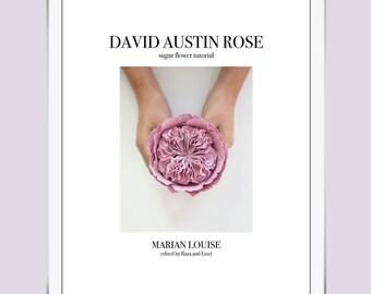 David Austin Rose - Sugar Flower Tutorial Booklet / PDF / eBook