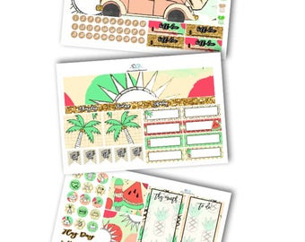 June Monthly Planner Kit Planner Stickers