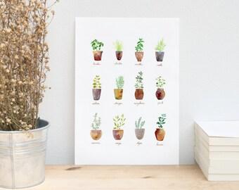 Affiche Herbes Aromatiques en Pot. Illustration Aquarelle. Poster de cuisine à imprimer. Décoration champêtre. Affiche en téléchargement