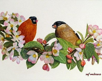 Fine art painting, watercolor, birds, gold finches in Apple Blossom