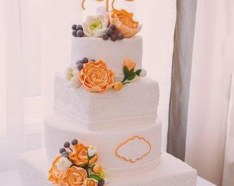 Custom Cake Topper,Personalized Cake Topper, Wedding Cake Topper,Mr and Mrs Cake Topper With Last Name,