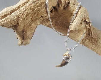 Real Fox Claw Wire-Wrapped Necklace / Authentic Taxidermy Jewelry