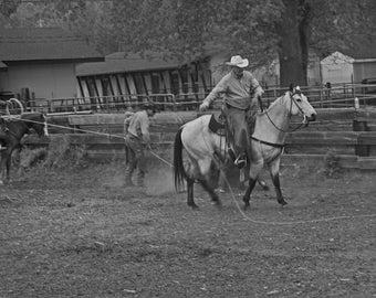 2nd Cowboy Roping