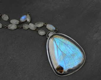 Real Butterfly Necklace. Sterling Silver Butterfly Necklace. Pearl Morpho Butterfly Pendant. Sterling Rainbow Moonstone Necklace.