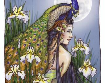 Iris by Renae Taylor