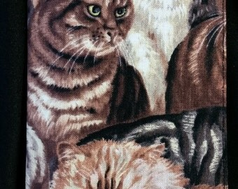 Cat Check Book Cover