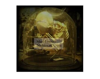 Halloween Decor, Child Skeleton 5x5 Inch Small Wall Art Photography Print, Macabre Halloween Wall Art, frighten