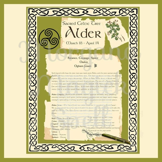 ALDER CELTIC SACRED Tree - Digital Download, Book of Shadows Page,Grimoire, Scrapbook, Spells, White Magick, Wicca, Witchcraft, Herb Magic