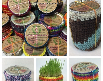 large upcycled wheat grass kit - pet grass - cat grass