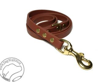 """Milk Chocolate Biothane Dog Leash - 5/8"""" (16mm) - Choice of: Stainless Steel or Brass Hardware and Length 4ft, 5ft or 6ft (1.2m,1.5m,1.8m)"""