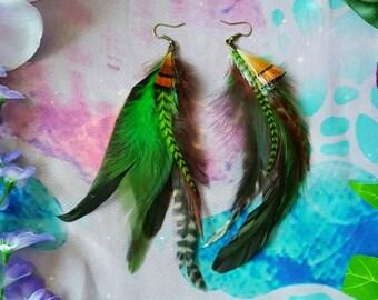 Beautiful earthy green colourn tribal feather earrings