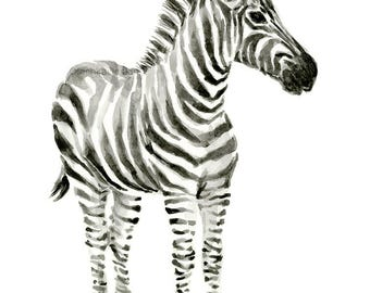 Zebra Watercolor Baby Animal Art Print Whimsical Zebra Animal Print Zebra Decor Nursery Decor Zebra Painting Baby Room Kids Room Decor