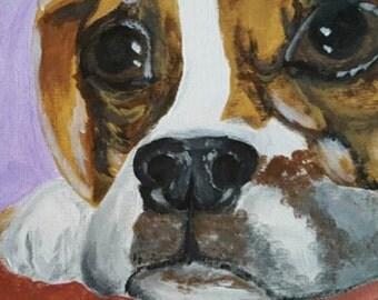 COMMISSION ME - pet portraits, Original Artwork, Draw Pets, Commission Me, Open Commissions, Pet Picture, One of a Kind