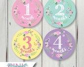 Floral Monthly Baby Milestone Stickers – Multicolor Floral Wreath Baby Girl Bodysuit Months Just Born in Pink Mint Green Purple Yellow