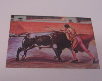 A Mexican Bull Fight