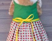 Apple Rabbit Dress