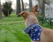 Customized Dog Bandana - Personalized Dog Bandana - Reversible Dog Bandana - Skulls Dog Bandana - Monogrammed Bandana - Dog bandana