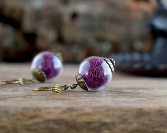 Purple fuchsia moss earrings, Real moss earrings, Miniature terrarium earrings, Glass ball earrings, Moss jewelry, True nature earrings