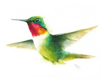 Hummingbird Watercolor Giclee Print - Modern Watercolor Bird Art -  Wildlife Bird Illustration