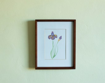 Watercolour Original Painting - Iris