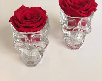 Individual Eternity Rose in a Skull Glass