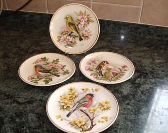 "Prinknash Pottery 4 x ""Finch"" plates, bird plates"