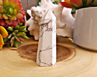 Self Standing Howlite Crystal Point