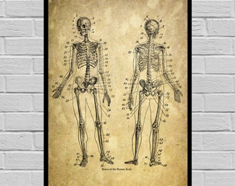 Antique Skeleton print, Old Paper, Vintage Dictionary page, Skeleton poster, Vintage Skeleton Art, Victorian Skeleton print V03