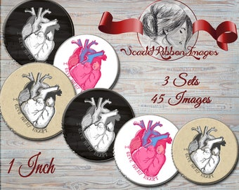Human Heart Anatomy  1 INCH- 45 IMAGES -3 Sets of 15 images each -Bottle Cap  -600dpi  digital collage sheet, stickers, charms, magnets