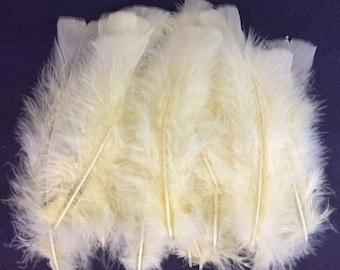 25 Cream Off White Turkey Feathers Beautiful Feathers Craft Turkey Feathers Unique Feathers Wedding Feathers Hat Embellishment