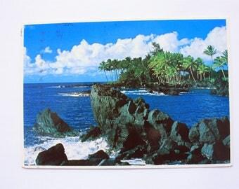 Maui Shoreline Hawaii Postcard 1983 / Maui Postcard / palm trees / island/ holiday/ Impact postcard