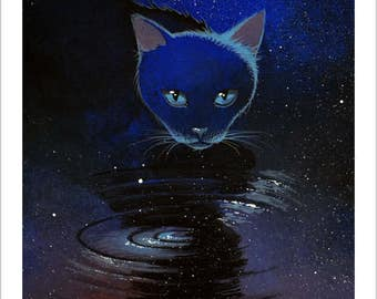 Cat drinks the Universe