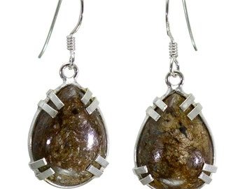 Bronzite Earrings, 925 Sterling Silver, Unique only 1 piece available! color brown, weight 4.7g, #29256