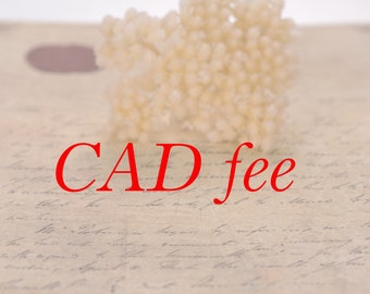 The extra cost for CAD drawn! Draw a draft for any jewelry,wedding engagement rings,pendants,earrings.