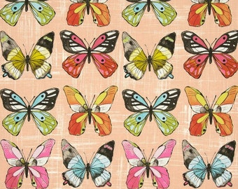 Flutter Fly in candy by Laura Gunn for Michael Miller -  cotton quilting fabric by the yard
