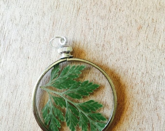 Fern Botanical Necklace- Green Fern Pendent - Pressed Floral Necklace - Nature Jewelry - Silver Layering Necklace- Glass Terrarium Jewelry