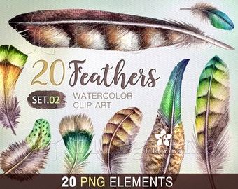 Feather WATERCOLOR Clip Art. Green brown feathers, wild, exotic, natural, tribal, boho, rustic. Easter decor. 20 elements. Read about usage