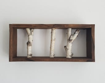 White Birch Branch Shelf, Framed Birch Art, Natural Log, Wall art, Wall Display, Modern Rustic Wall Decor, Wall Hanger, Shabby Chic