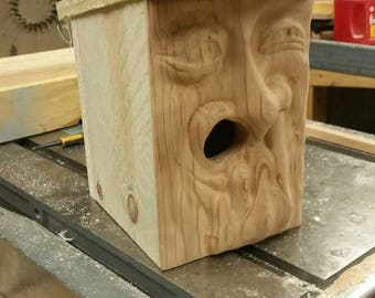 Carved front birdhouse - Nose picker