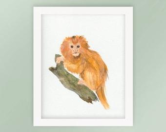 Golden Lion Tamarin Monkey Nursery Animal Watercolor Art Print