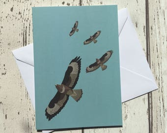 Buzzard greeting card - blank inside
