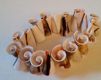 Shell stretch bracelet
